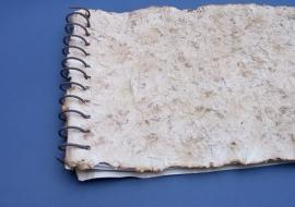"""Knyga """"23 nuodėmės"""", 2002."""